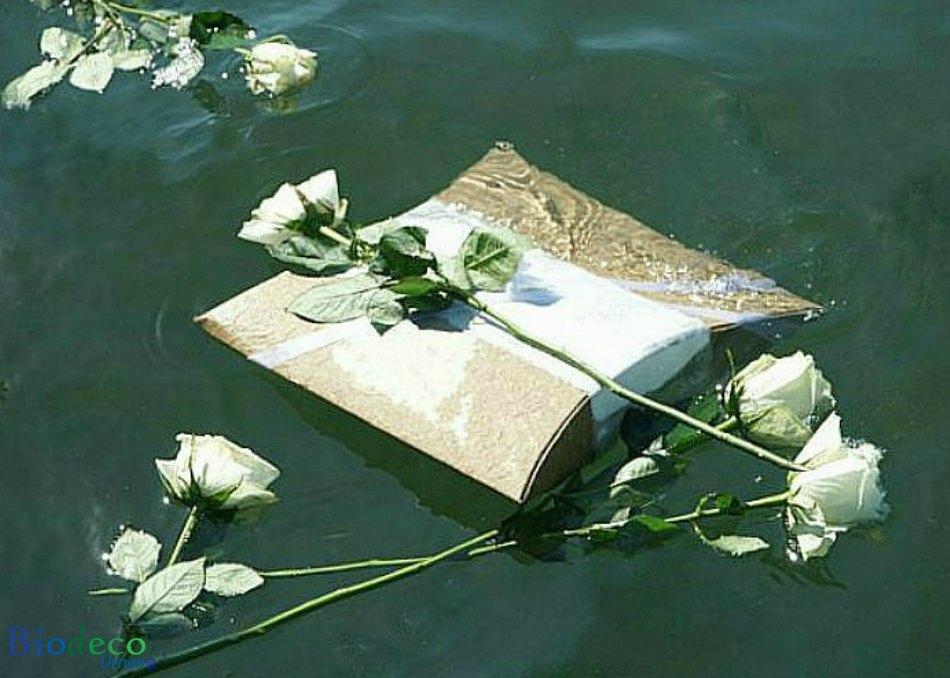 De zee-urn Journey Naturel, bijgezet voor de kust van scheveningen, met witte rozen als laatste groet