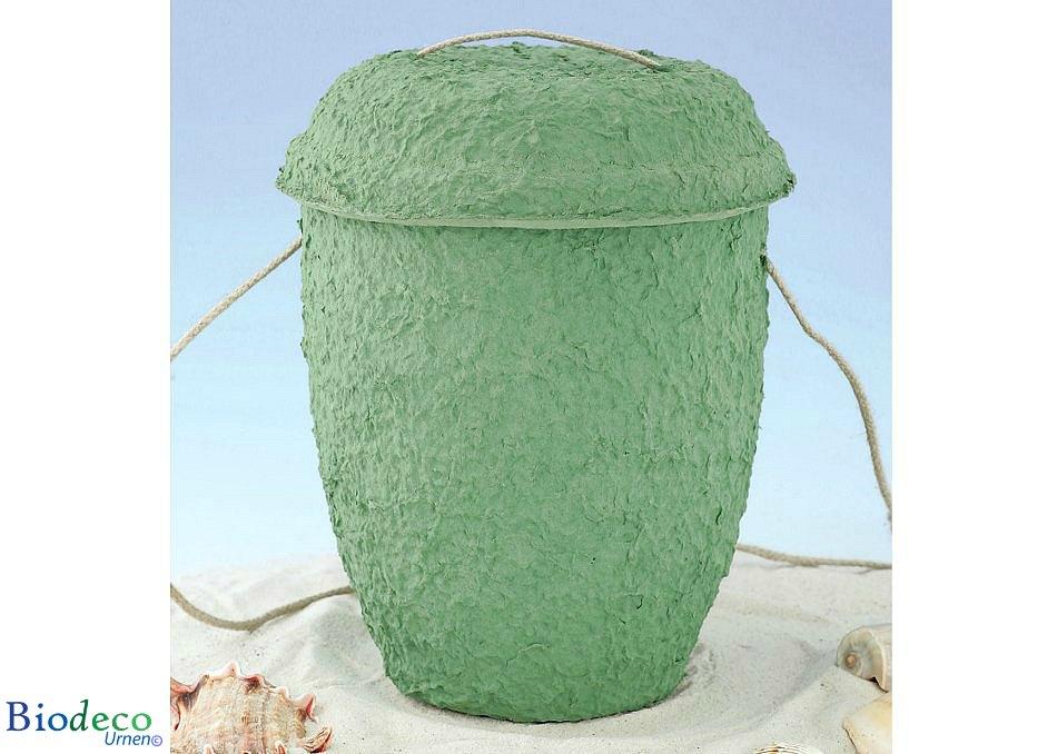 Biologisch afbreekbare zee-urn Cellulose Zeegroen op het strand, met touw voor een waardige asbijzetting