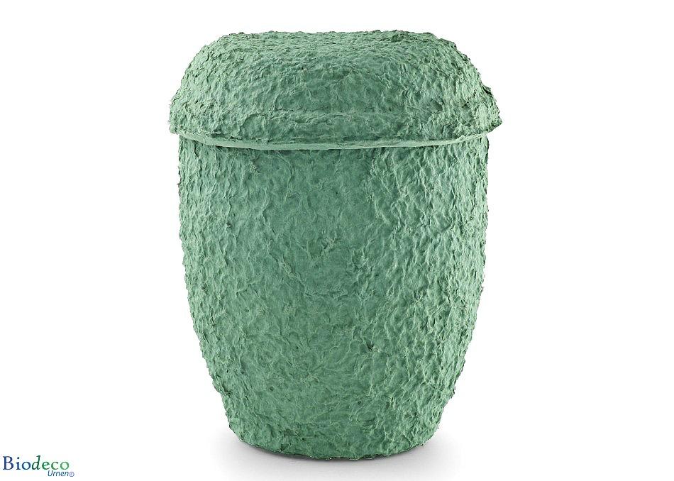 Biologisch afbreekbare zee-urn Cellulose Zeegroen,gemaakt van gerecycled papier