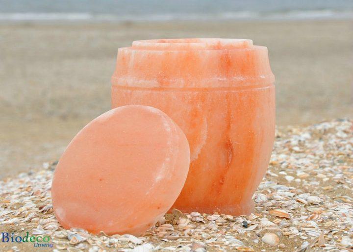 De mooie zee-urn Himalaya Zout, op het strand van Scheveningen