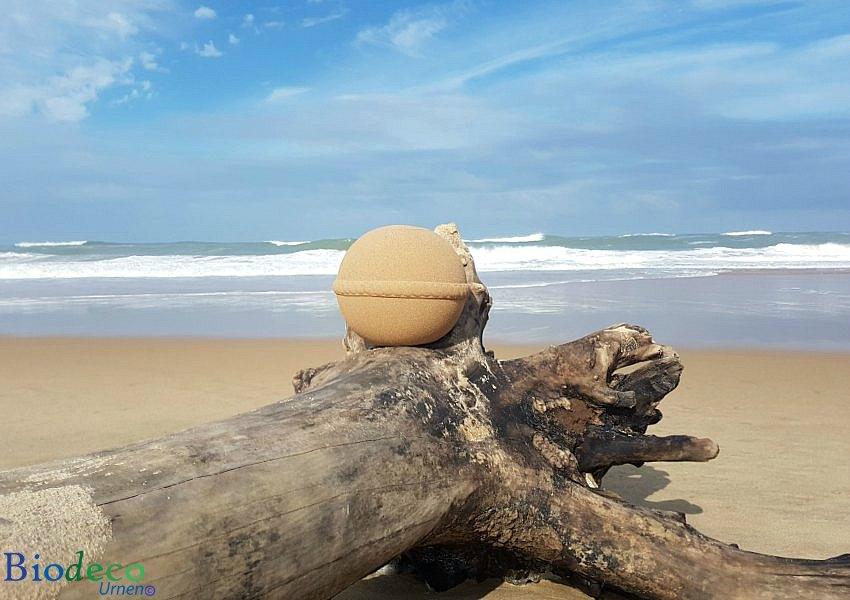 Zee-urn Sand Round opgesteld op een aangespoelde boom op het strand aan de Atlantische oceaan voor de kust van Frankrijk