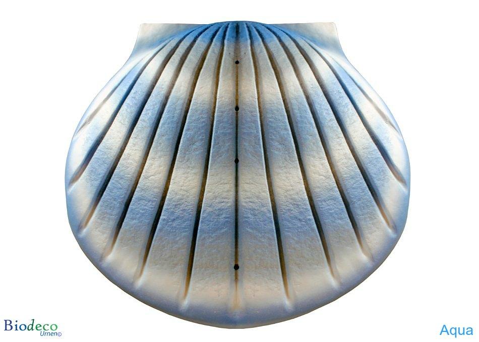 De biologisch afbreekbare zee-urn Schelp in de kleur aqua, voor asbijzetting in het water.