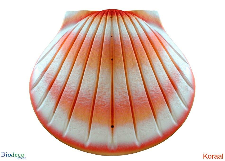 De biologisch afbreekbare zee-urn Schelp in de kleur koraal, voor asbijzetting in het water.