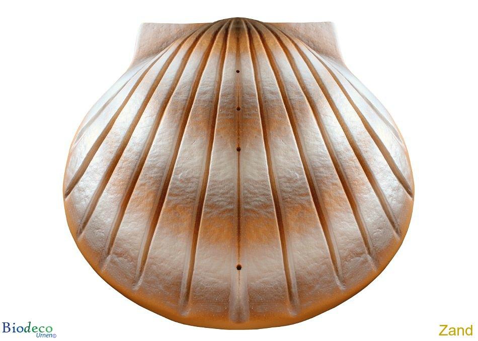 De biologisch afbreekbare zee-urn Schelp in de kleur zand, voor asbijzetting in het water.