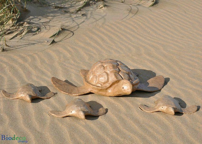 De biologisch afbreekbare zee-urn Schildpad op het strand van Scheveningen, omringd door drie mini Schildpad zee-urnen